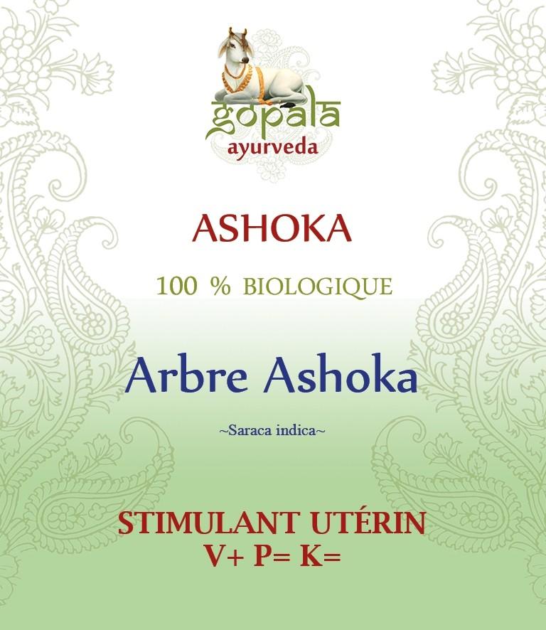 ASHOKA ( Saraca indica)  BIO Gopala A.