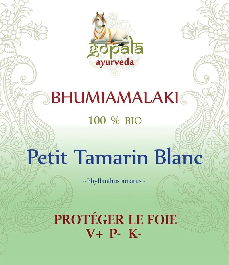 BHUMIAMALAKI (Phyllanthus amarus) BIO Gopala A