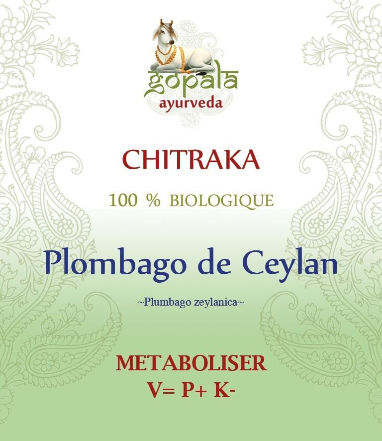 CHITRAKA (Plumbago Zeylanica ) BIO Gopala A.