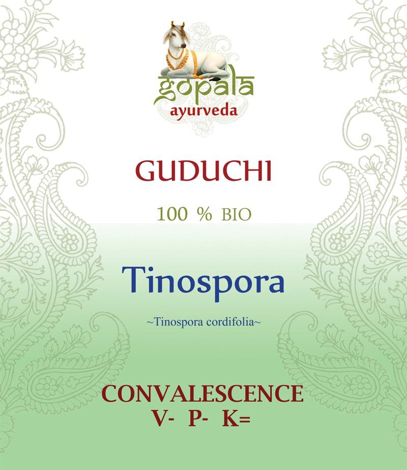 GUDUCHI (Tinospora cordifolia)  BIO Gopala A.