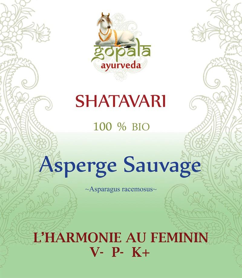 SHATAVARI (Asparagus racemosus) BIO Gopala A.